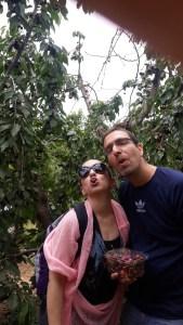 לירון ואני אוכלים דובדבנים, עין זיוון, רמת הגולן